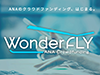 WonderFLY CREATIVE AWARD