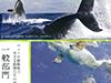 第18回 全日本動物写真コンテスト